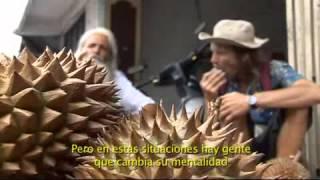 Que crudo lo tenemos (Documental sobre el crudivorismo)