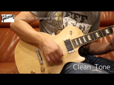 Gibson USA Standard Raw Power