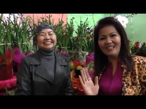 Hội Chợ Hoa Tết Bính Thân 2016 Tại Little Saigon / Asian Garden Flower Festival 2016 / P1