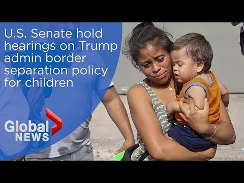 U.S. Senate hold hearings on Trump admin border separation policy for children