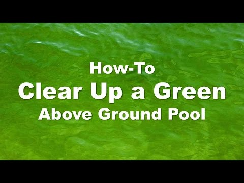 Clearing Up A Green Above Ground Pool Step By