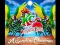 Miniature de la vidéo de la chanson A Sunshine Christmas