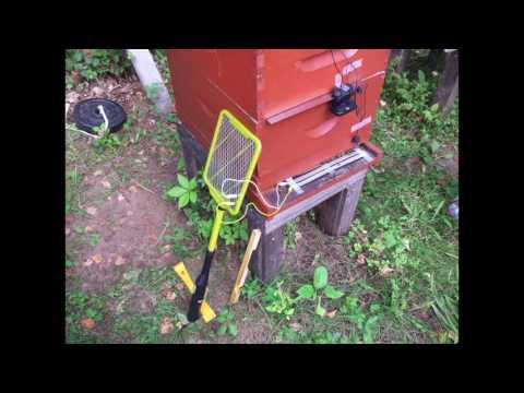 Indian Beekeeping - John Abbott - Milwaukee Waukesha Beekeepers Association
