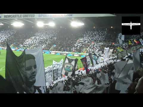 Amazing scenes at St. James' Park | 125 years celebrations