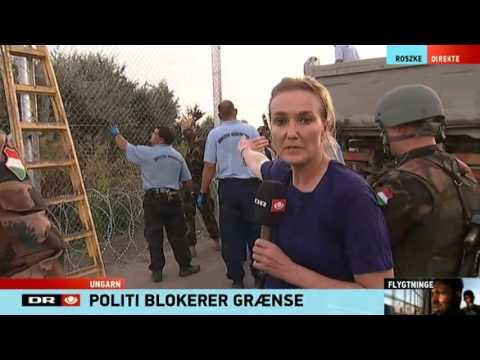 Ungarn lukker flygtninges hovedfærdselsåre fra Serbien - TV Avisen
