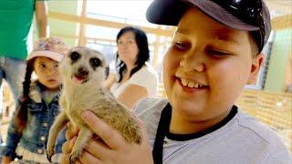 видео Контактный зоопарк в астане, страна ЕНОТиЯ