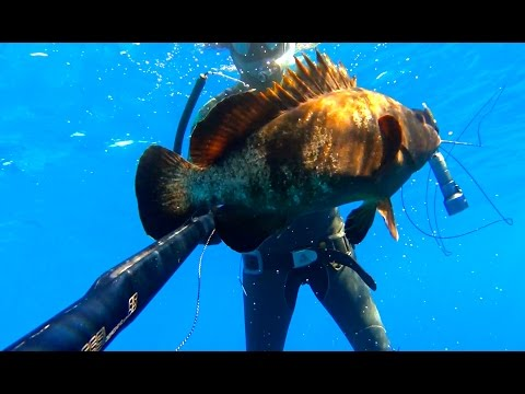 Spearfishing Best Moments - Greece Trip June 2016
