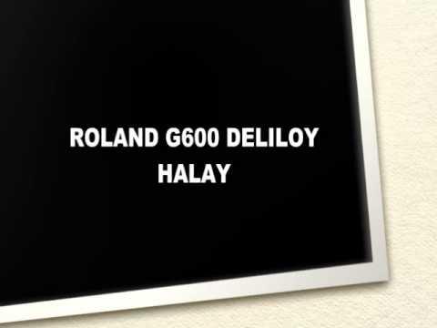Deliloy | Halay | Oyun Havaları