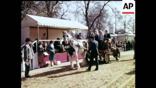 Repeat youtube video HARNESS HORSE PARADE - COLOUR