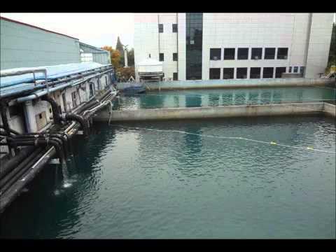 Underwater Cleaning Robot
