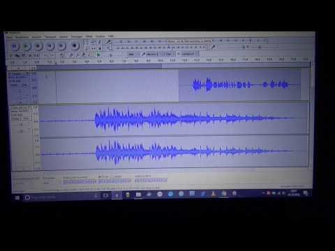 Audacity - Audios schneiden für Online Kongresse