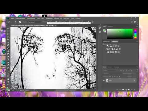 Как увеличить или уменьшить картинку в фотошопе