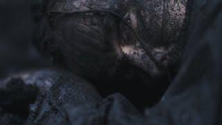 Mone - Big brown bear (official video)