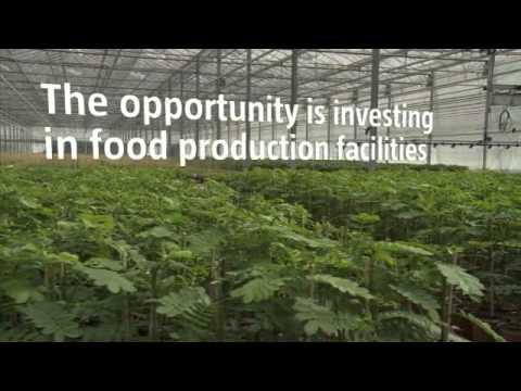 Robeco: The end of abundance - Next steps in food & agri investing