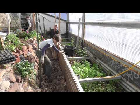 Crmpi Build A Worm Farm In Your Pathways Youtube