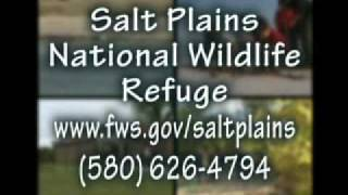 Great Salt Plains National Wildlife Refuge