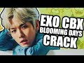 EXO CBX - BLOOMING DAYS CRACK (IDK, CAN YOU?) Mp3
