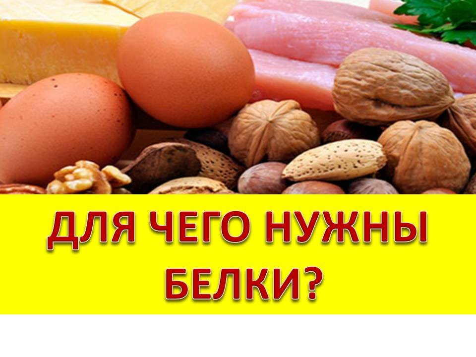 решить проблему для чего нужен белок человеку Алла Пугачева выступила