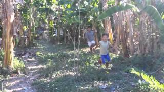 Philippines banana warfare