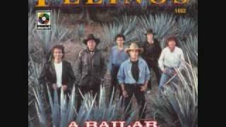 Jambalaya Country Los Felinos.wmv