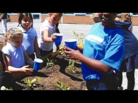 New London Farm to School Project