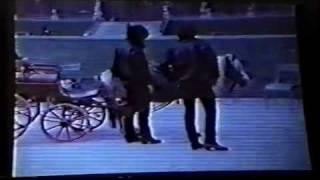 映画「キャロル」より メンバーの寝起き、空手の練習、馬乗り、仲が良さ...