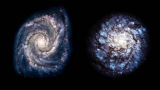 Perspectives on Spiral Galaxies