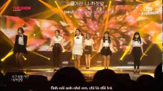 [QVN] [VIETSUB KARA HANGUL][12.11.13] T-ARA - Lies Special Stage SBS MTV The Show