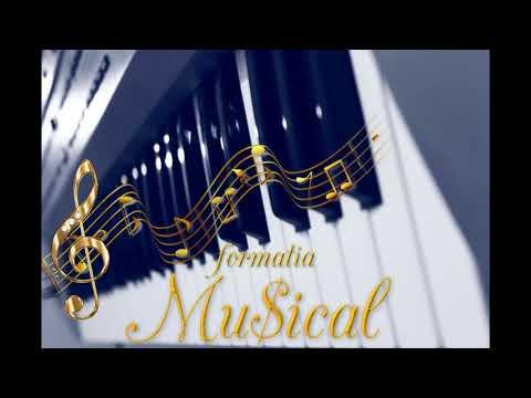 Formatia MUSICAL Tulcea - Colaj muzica machedoneasca