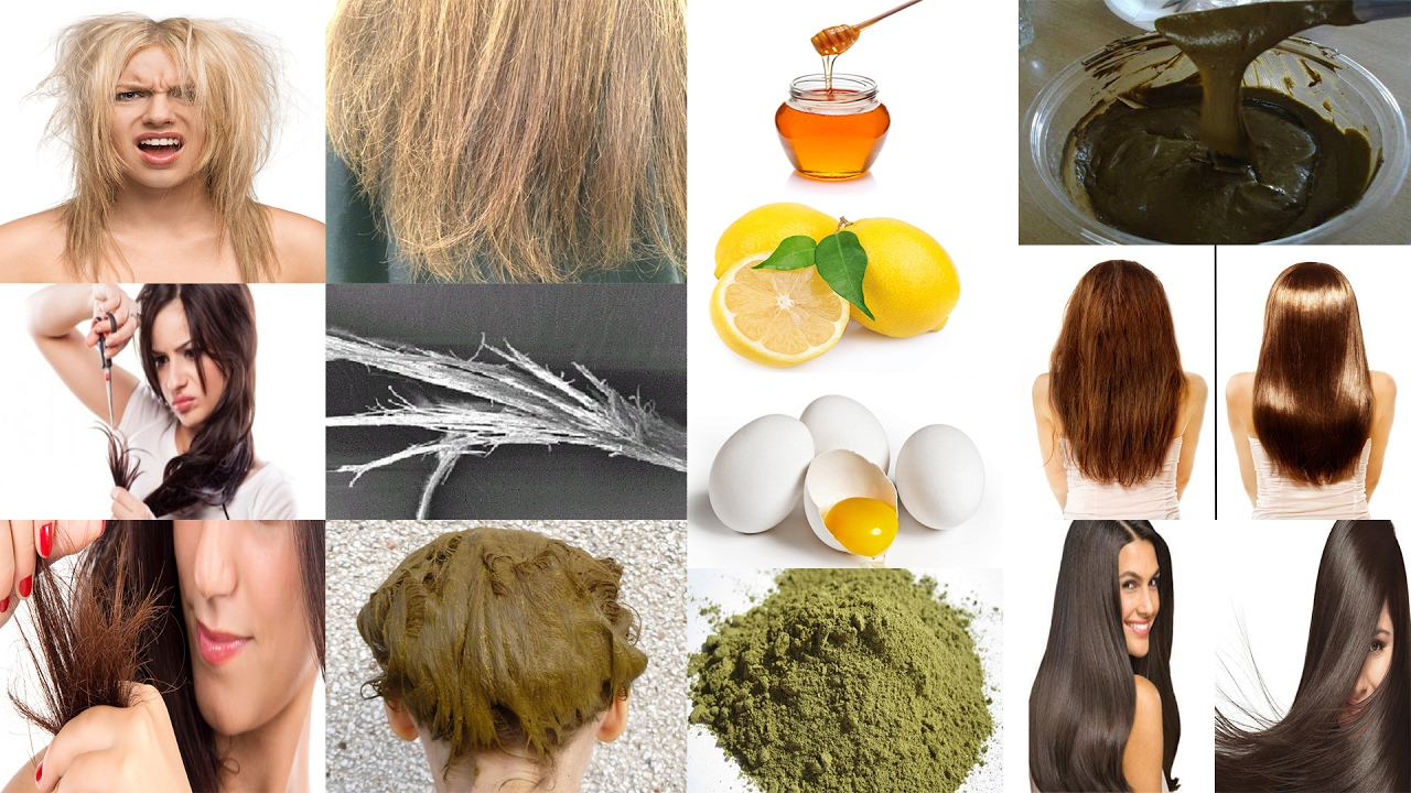 Home Remedies For Split Ends Dry Frizzy Rough And Damaged Hair
