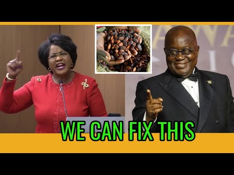 AMAZING! Dr Arikana Supports Ghana President's Decision not Export Cocoa to Switzerland