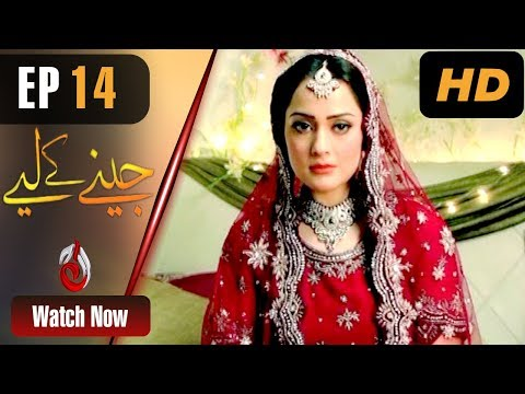 Jeenay Ke Liye - Episode 14 - Aaj Entertainment Dramas