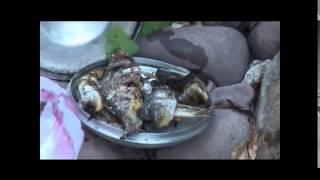 Ncig teb chaws noj ntseg p 1, Vacation to Laos fishing part 1, ຫາປາໃນແມ່ນຳ້ຕອງ 1