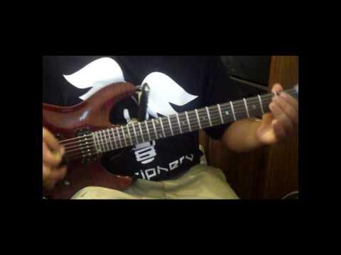Psychostick - Jagermeister Love Song (Guitar Cover)