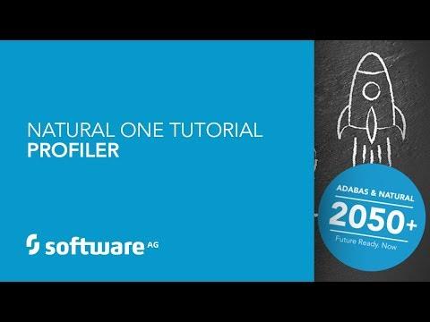 Natural ONE Tutorial - Profiler