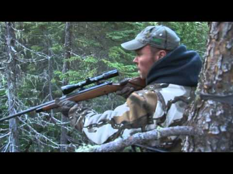 Black Bear Hunting In New Brunswick Canada With JLR Trophy Bear Hunting