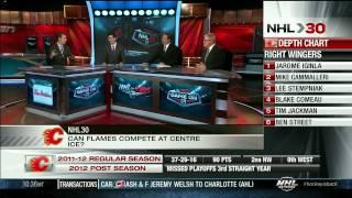 NHL 30 : NHL Teams season 2012/13