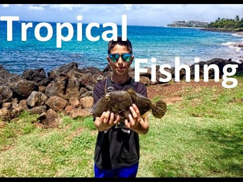 Fishing Maui Hawaii!
