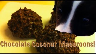 Chocolate Coconut Macaroons | Five Minute Pastry School