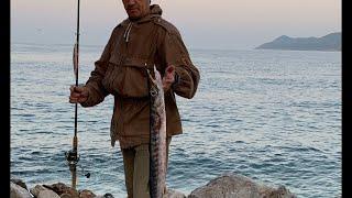 Рыбалка в Турции на баракуду