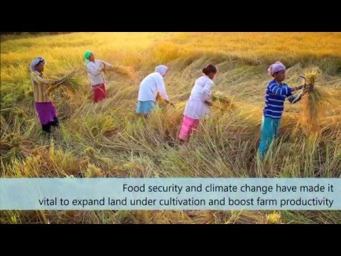Improving Agriculture on India's Rain-fed Lands