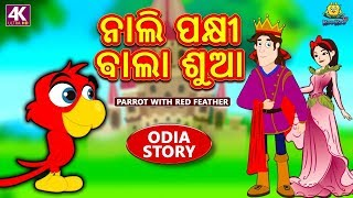ନାଲି ପକ୍ଷୀ ଵାଲା ଶୁଆ - The Parrot with Red Feathers   Odia Story for Children   Odia Fairy Tales