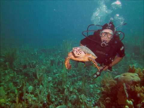 ZF2AG Grand Cayman Island. From dxnews.com