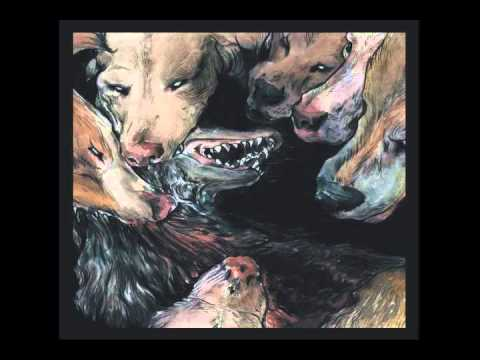 Okkultokrati - Rose Crux