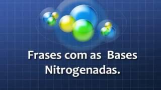 Macete do DNA - Bases Nitrogenadas