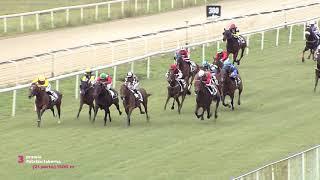 Vidéo de la course PMU PREMIO PATXIKU TABERNA
