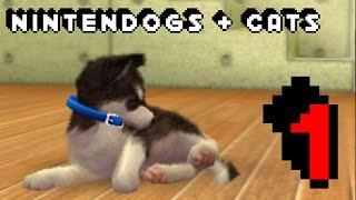 Let's Play Nintendogs + Cats: Episode 1: Pet Rescue