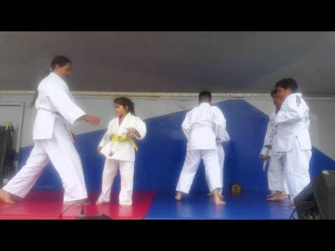 Westminster Judo demonstration