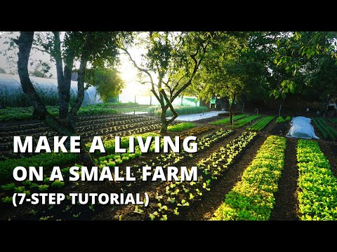 How to Start a Farm From Scratch (Beginner's Guide to Growing Vegetables for Profit)