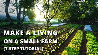 How to Start a Farm From Scratch (Beginner\x27s Guide to Growing Vegetables for Profit)